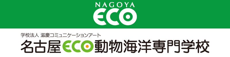 名古屋ECO動物海洋専門学校
